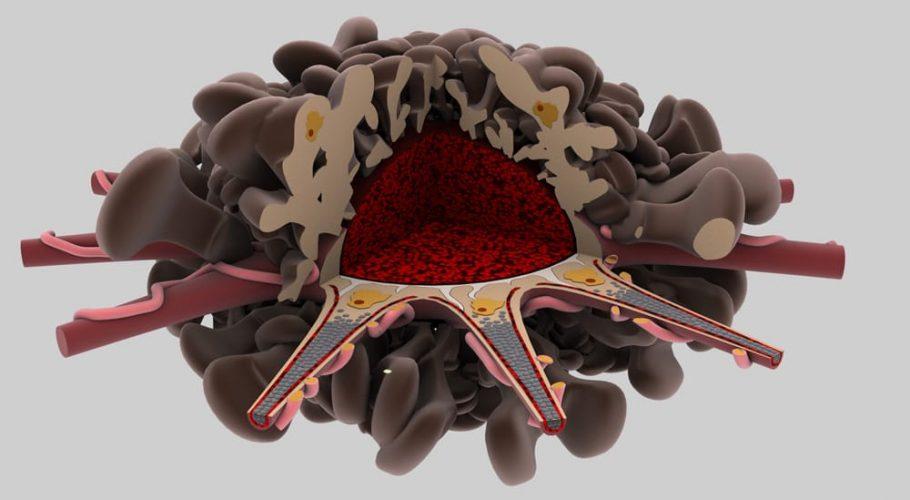 3D Biology elements